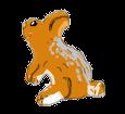 Conejo de campo  - pelaje 1340000006