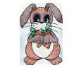 Conejo de campo  - pelaje 16019